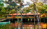 pantanal-jungle-lodge-uma-autentica-aventura-na-selva